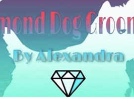Diamond dog grooming by alexandra