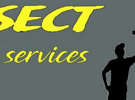 painters and decorators and general services
