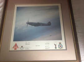 Eternal Grace Spitfire limited edition 103/250