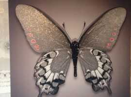 Beautiful butterfly  canvas picture