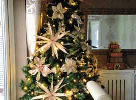 Christmas tree-stunning, thick foliage and big...7tf