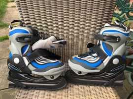 Hockey Skates in excellent condition - with the see-through carrier case.