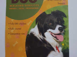 No Dog to Big no Dog to Small- Dog walking services