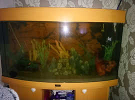 Jewel fish tank with stand