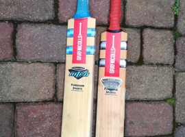 Gray Nicolls Willow Cricket Bats x 2