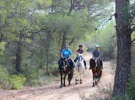 Equestrian holidays in the Spanish countryside