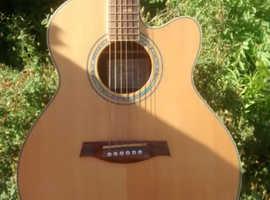Tree of life Ibanez guitar