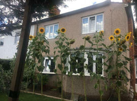 A sweet-home-replacement room in Mitcham
