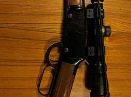 Henry Repeating Arms .22lr