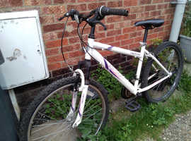18 Gears Lady's Mountain Bike in excellent condition