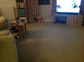 As new carpet