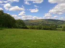 Four acres of space, peace and splendid isolation - for your caravan - Powys