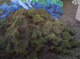 FREE TURF TO COLLECTOR