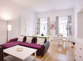Fantastic cozy apartment for rent