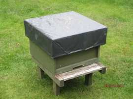 FULL WORKING NATIONAL BEEHIVE FOR SALE. 2019 QUEEN BEE & CAPPED BROOD ETC.,