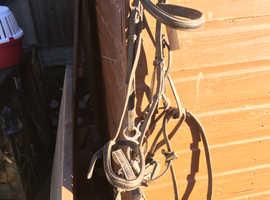 Loads horse tack