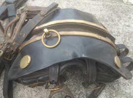Large Box vintage horse tack