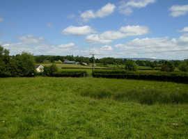 One acre grazing near Llandrindod Wells
