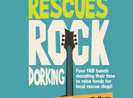 Rescues Rock Dorking in aid of Epsom Canine Rescue