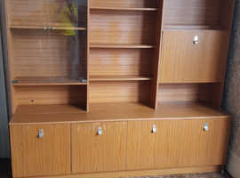 Wall unit cabinet for all your items to display