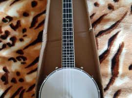 4 strig banjo