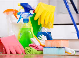 Home help /House cleaner