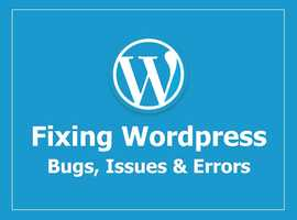 I Will Fix Wordpress Website Errors And Issues In 1-6 Hours