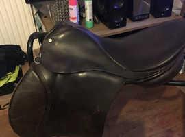 Selection of saddles