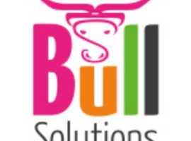 Marketing professional Cardiff | Website Design Cardiff | Bull Solutions