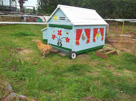 Quirky Ole Chicken House
