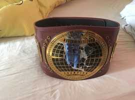 NXT WWE North american champion adult replica belt with cover