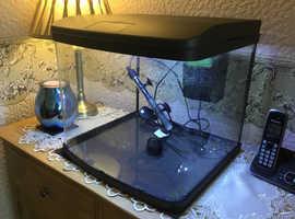 Love fish vantage fish tank