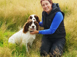 Dog walking or visits, overnight dog sitting, experienced and reliable
