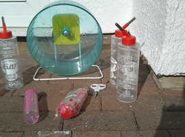 Pet accessories for degu / hedgehog / chipmunk £5