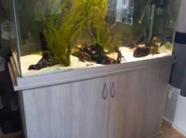 370 litre fish tank full set up