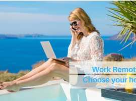 High Performing Sales Professionals - looking to work remotely