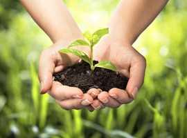 Super foods, energy and healt