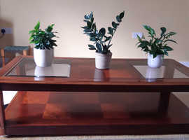 Solid Wood Coffee Table and Lamp Table