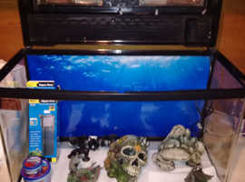 Interpret fish Pod 120 litre aquarium
