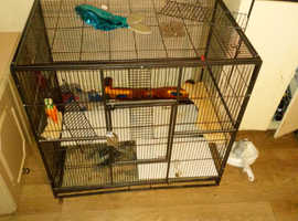 Small animal cage ratnation