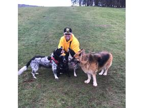 Active fun dog walking & caring home from home pet sitter