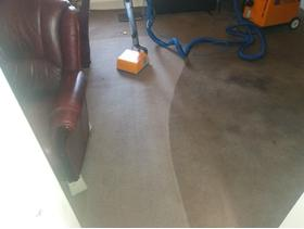 PROFESSIONAL CARPET CLEANING 2 rooms £39.99