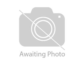 BRAND NEW 4 WHEEL FOLDING WALKIND AID, WITH BRAKES, SEAT AND SHOPPING BAG