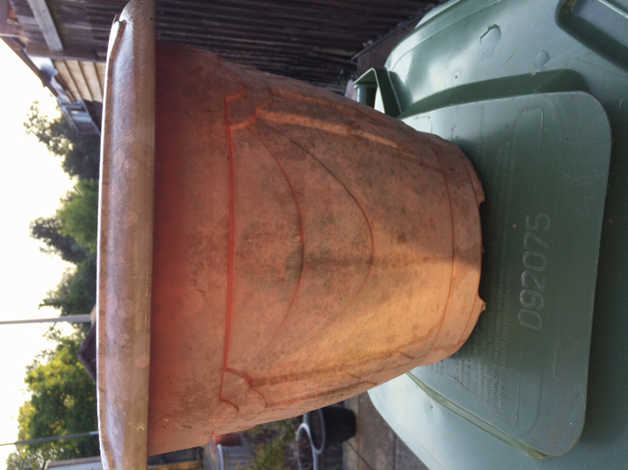Free pots in Caerphilly